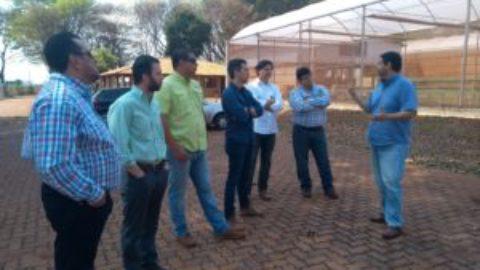 Consultoria para usina de cana-de-açúcar da Nicarágua